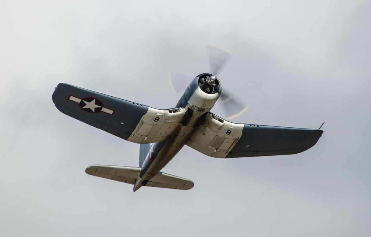 A Warbird in the Belly of the Mouse