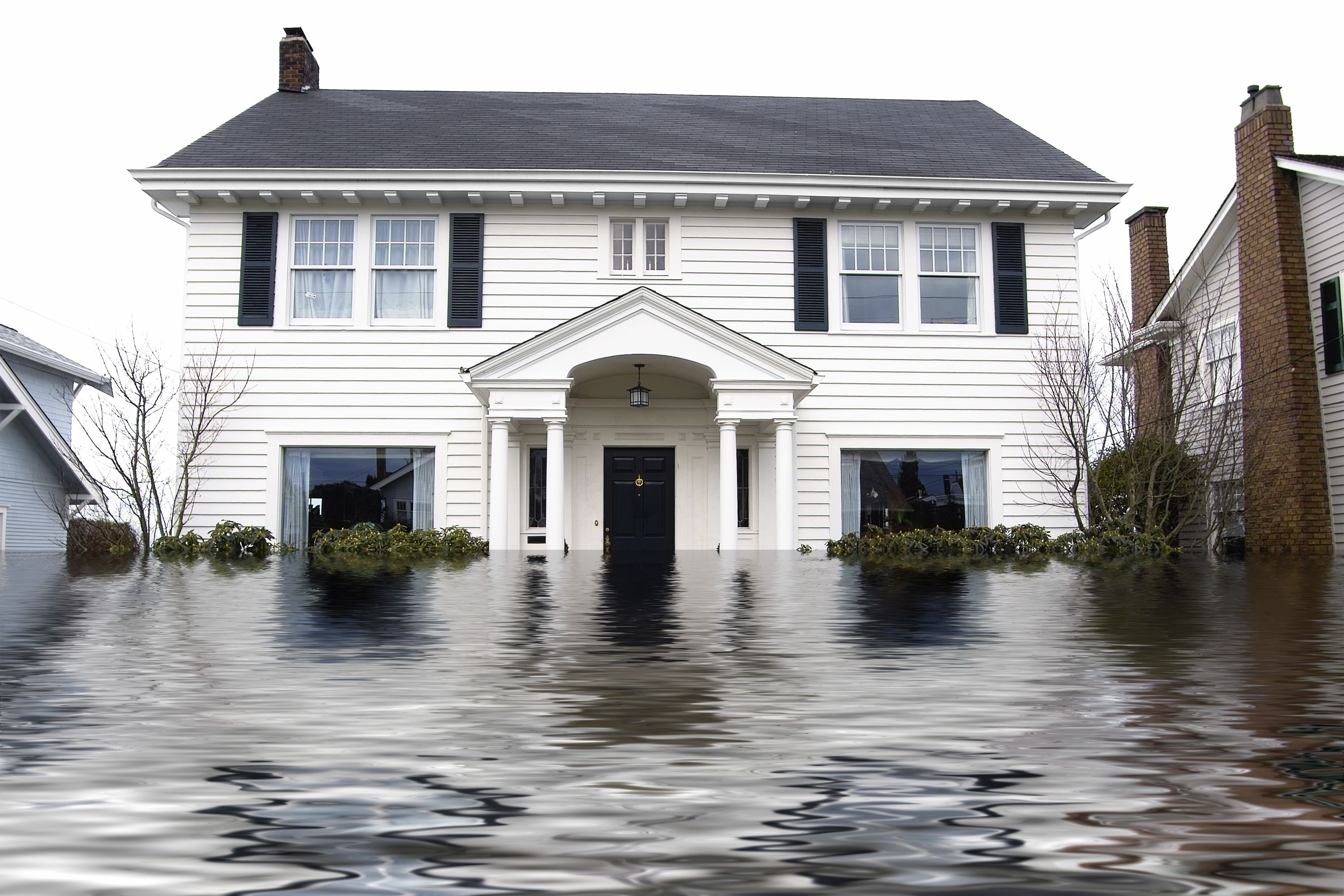 25 Off Cleaning Flood Damage Flood Insurance Water Damage Repair