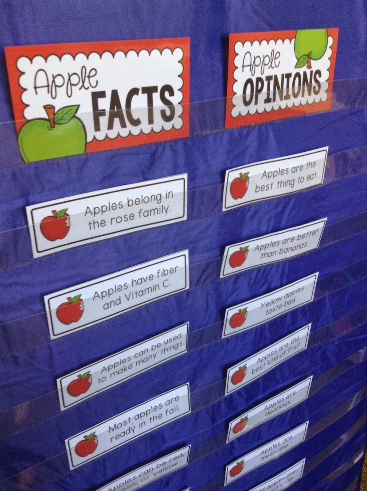 First Grade Apple Activities Apple Facts Amp Opinions