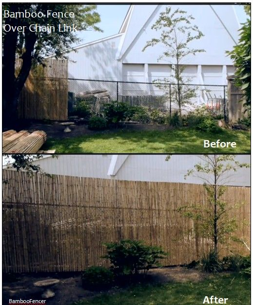 Bamboo Fencing Installed Over Chain Link For Privacy Non Hoa