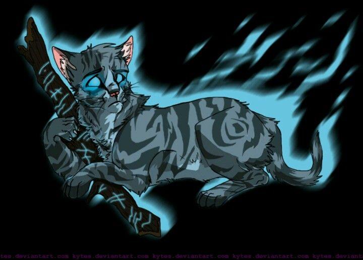 Jaypaw Jayfeather Medicine Cat Of Thunderclan Serves With