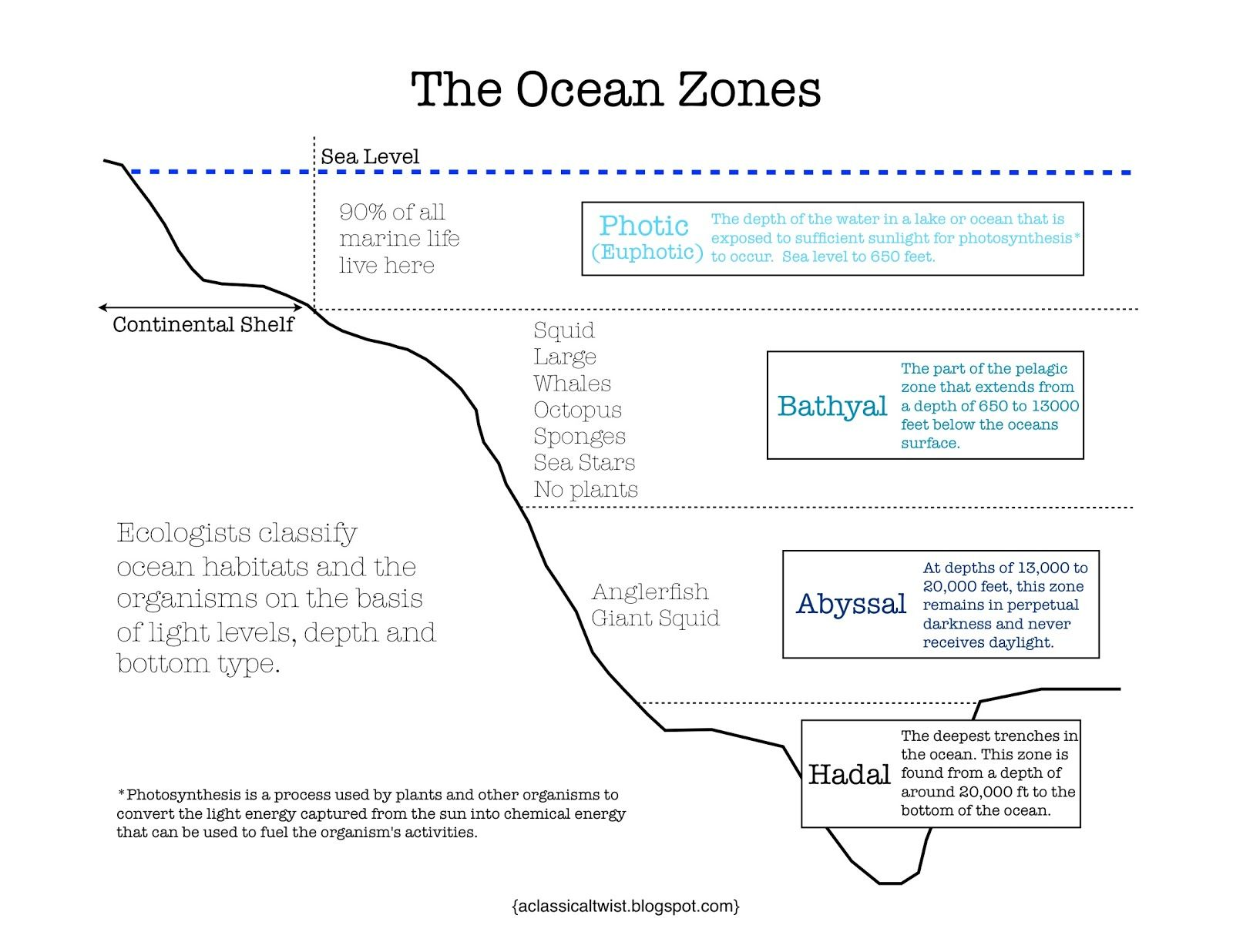 Homeschooling With A Classical Twist Ocean Zones Printable