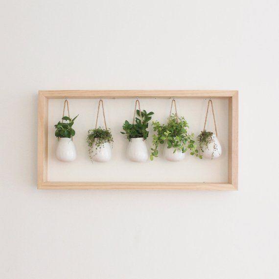 Photo of Indoor Kräutergarten in Holzrahmen | Wandhalterung Pflanzgefäß | Einweihungsp… – New Ideas