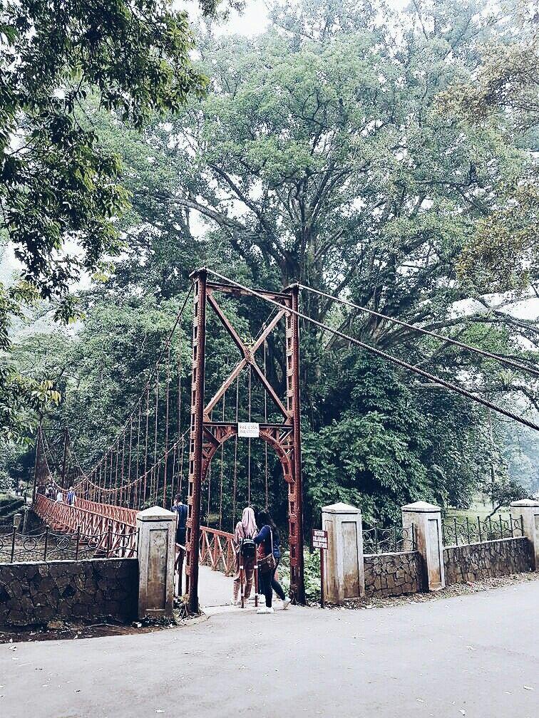 Botanical Garden Bogor, West Java, Indonesia