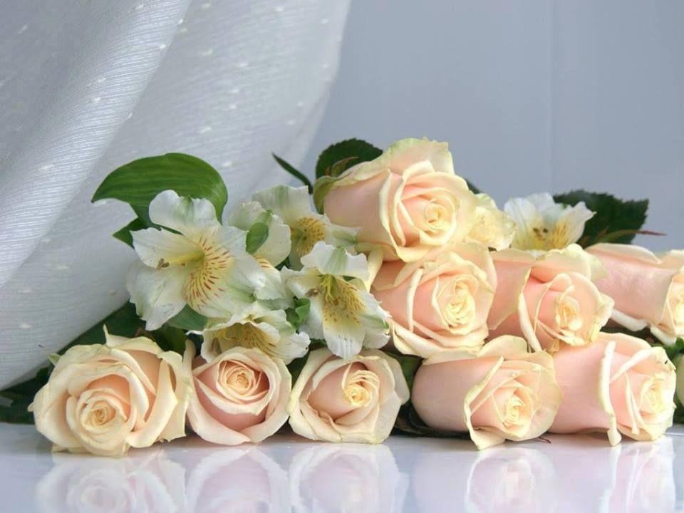 الطيبة هي اجمل ما يتركه الانسان في قلوب الاخرين الطيبة هي ان تكون كارض الخصبة تعطي ثمارها Good Morning Flowers Flowers For You Good Morning Wishes