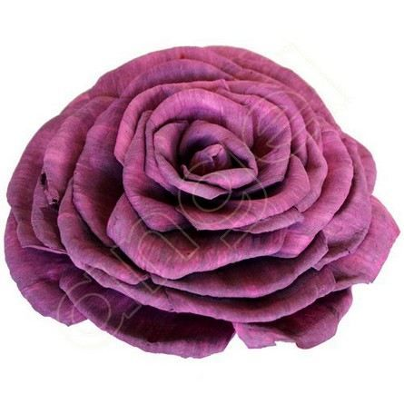 Chinaberry royal roses wholesale paper flowers australia i chinaberry royal roses wholesale paper flowers australia i available at mightylinksfo