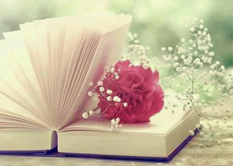 слава картинки для обложки книги цветы помощью фотообоев можно