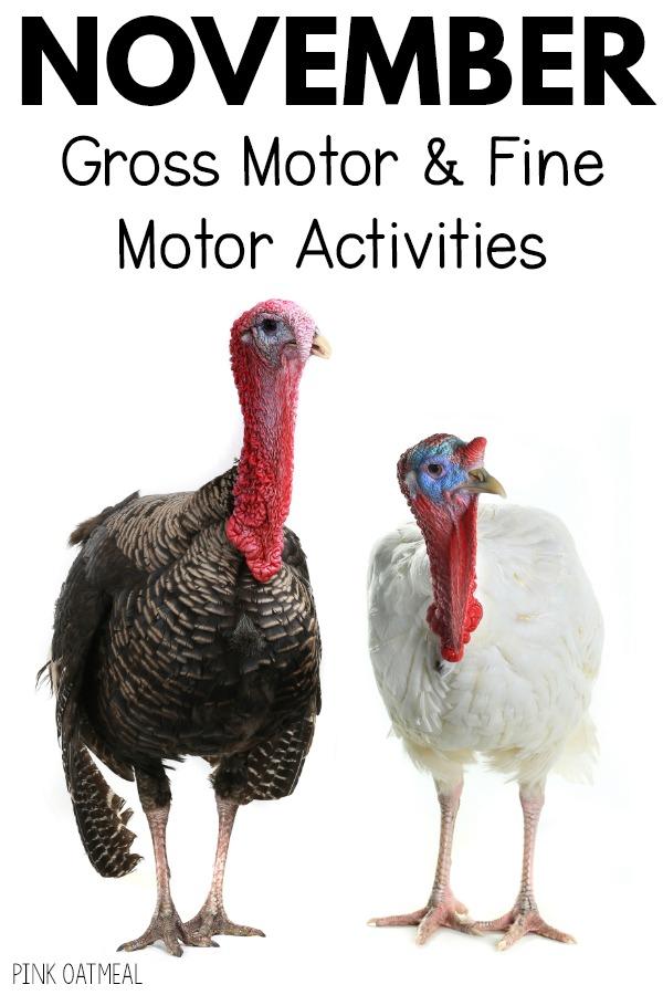 November Gross Motor And Fine Motor Activity Planning Motor