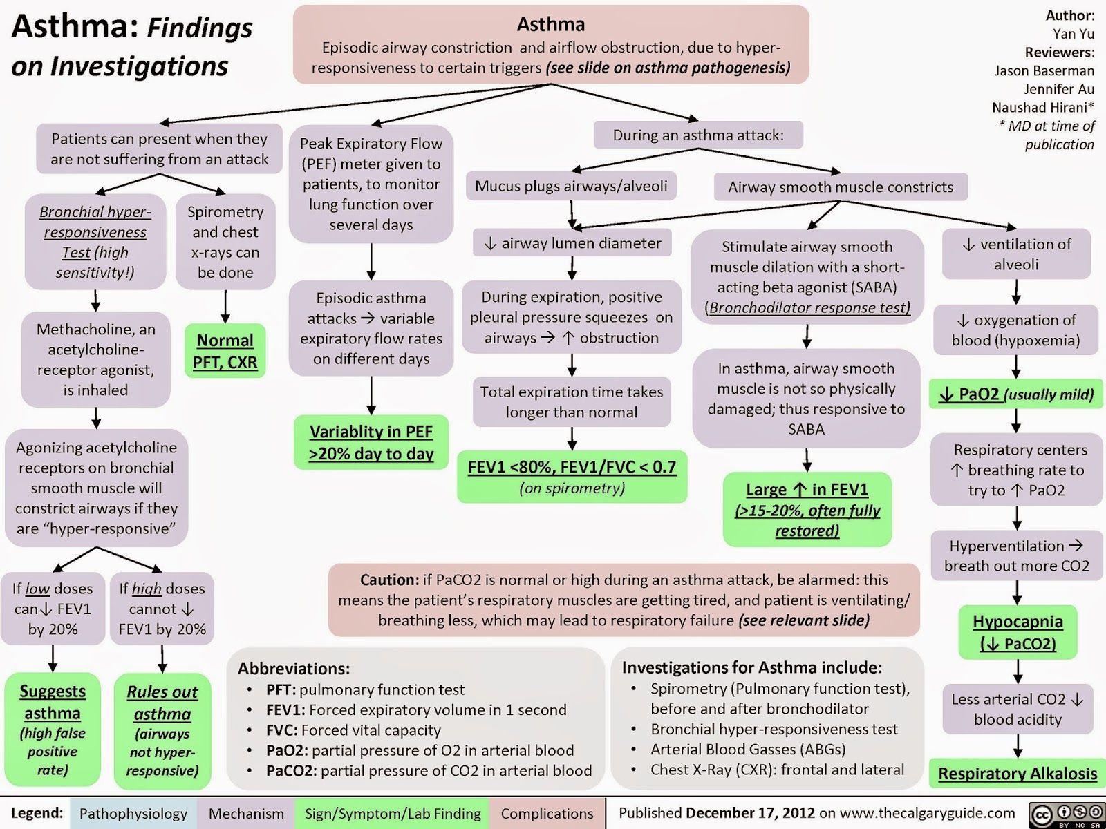 Adult Emergency Medicine: Asthma - Pathophysiology and ...