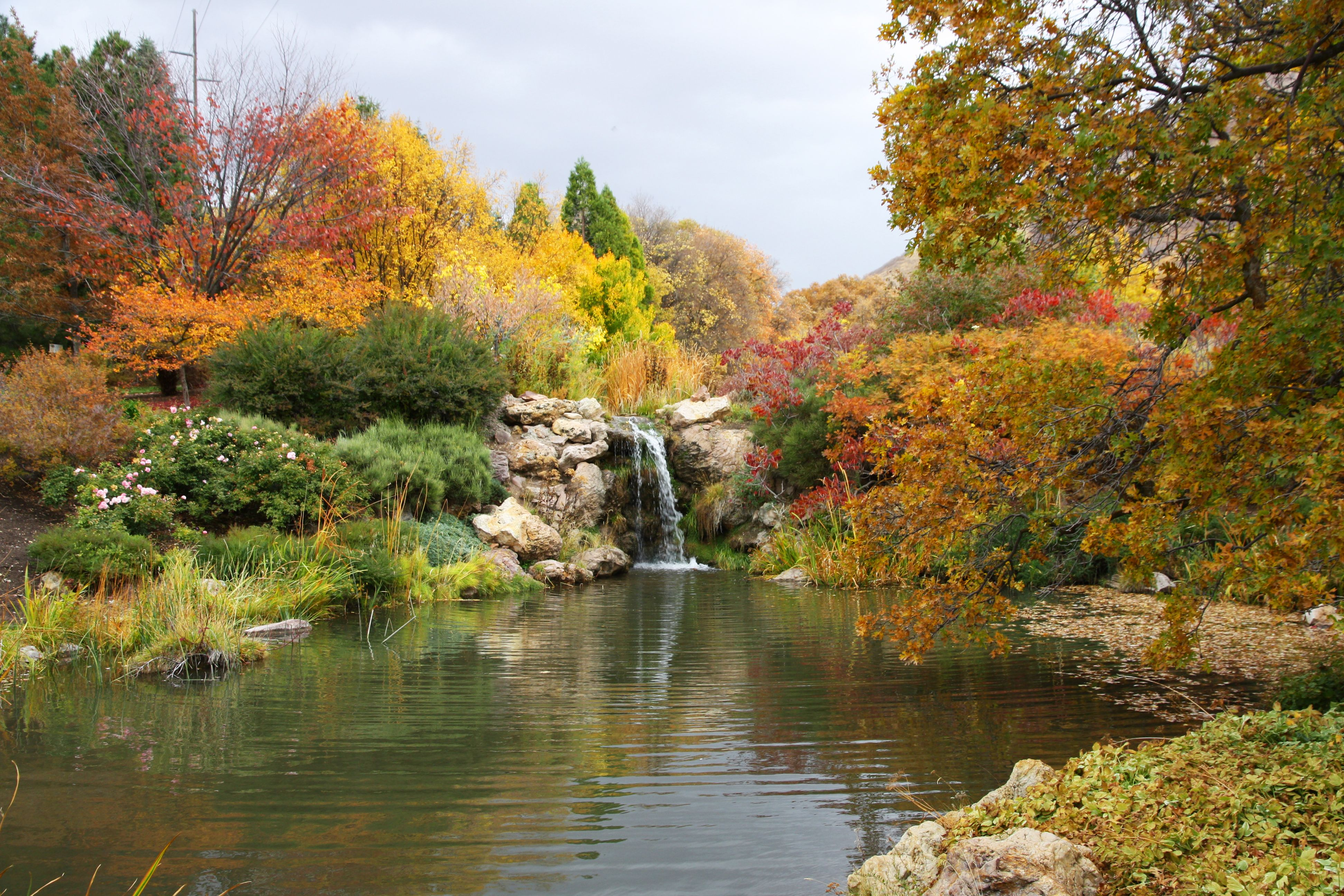 A Legendary Shot Of Our Waterfall Red Butte Garden Is Awesome All