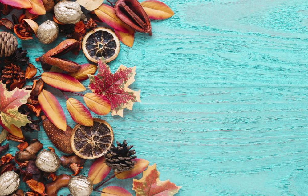 Обои осень, листья, фон, дерево, colorful, орехи, шишки ...