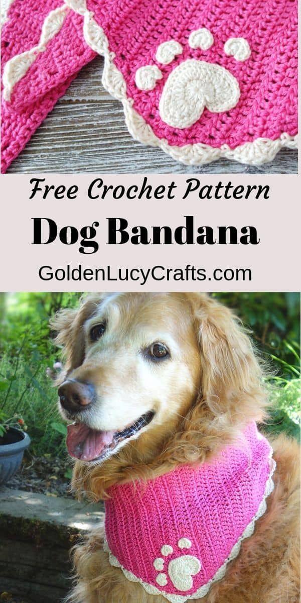 Crochet Dog Bandana Pattern, Crochet for Pets – GoldenLucyCrafts -  Crochet dog bandana, crochet for pets, crochet patern for dog, DIY dog bandana, #dogbandana , #croc - #bandana #crochet #CutePuppies #Dog #ExoticPets #goldenlucycrafts #pattern #PetAccessories #PetBeds #Petcare #PetClothes #PetDogs #PetPhotography #PetProducts #Pettips #Pets