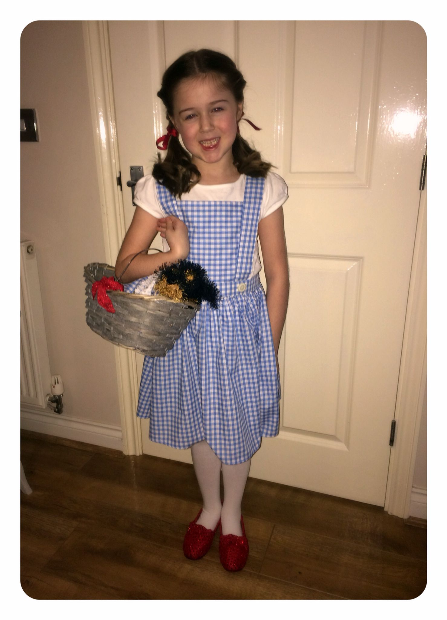 Homemade Dorothy from wizard of Oz. Cheap material and easy ...
