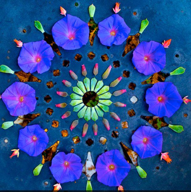 Resultat d'imatges de mandalas naturaleza y conciencia