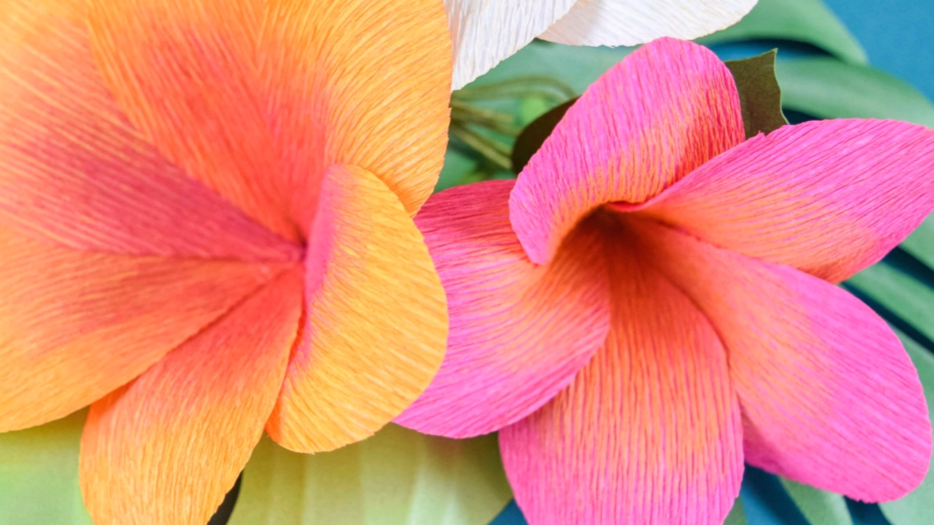 DIY Easy Plumeria Paper Flowers with FREE Flower Templates