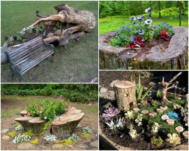 Arbre Mort Bois Flotte Et Souche D Arbre Pour Decorer Le Jardin Souche D Arbre Deco Jardin Decoration Jardin