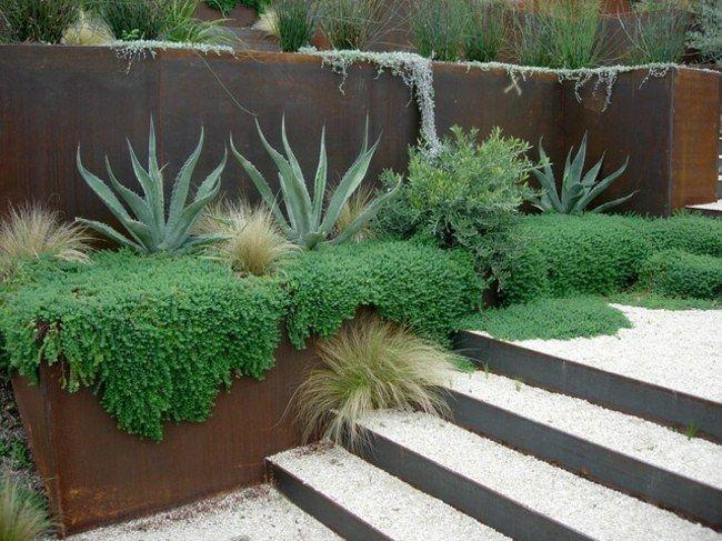 garten mauer immergrüne pflanzen kiesel | gartengestaltung, Hause und Garten