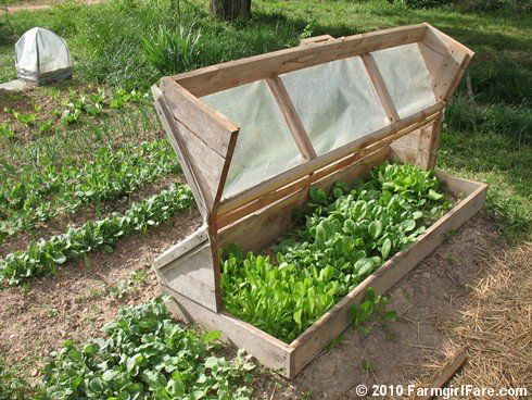 0864b2d6270 DIY build an amish cold frame  Amish
