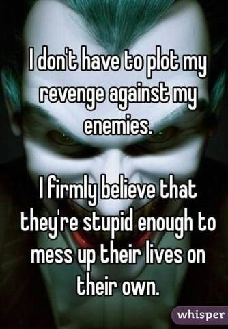 I don't have to plot my revenge against my enemies. I firmly believe that they're stupid enough to mess up their lives on their own.