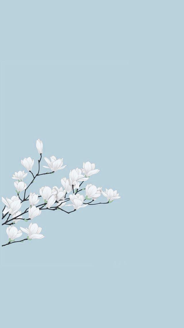 simple, cute aesthetic wallpaper