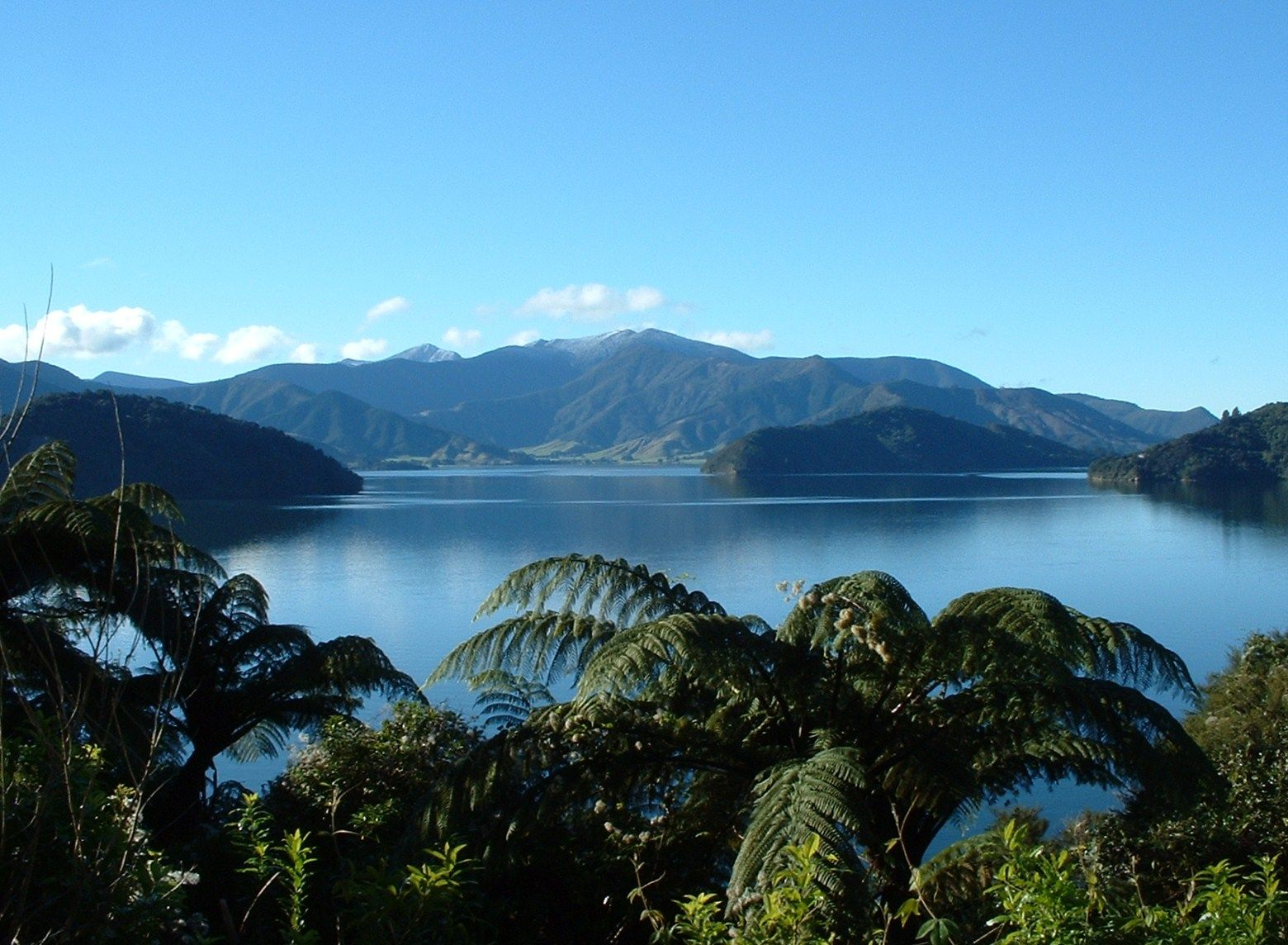 Häuser Neuseeland Queen Charlotte Sounds Marlborough New Zealand New