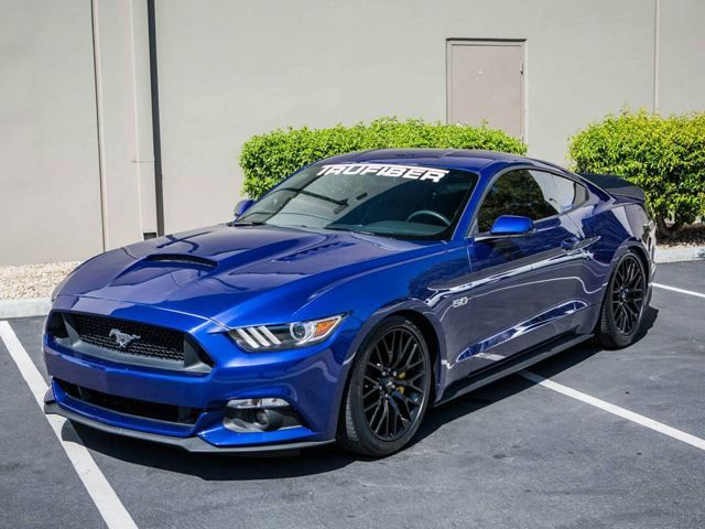 Electric Blue Ford Mustang Looks Up For A Fight 2015 Ford Mustang 2015 Mustang Gt Ford Mustang