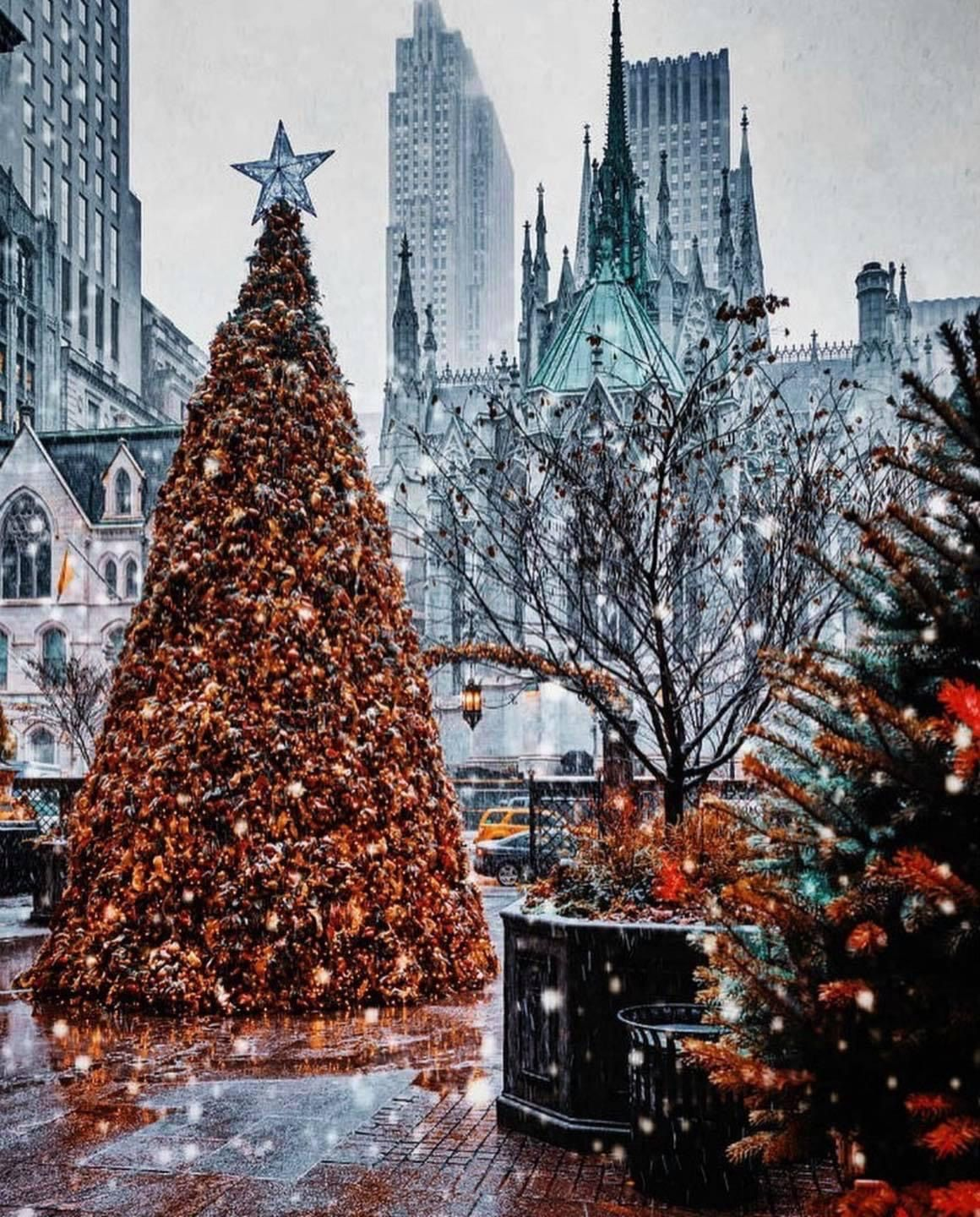 Albero Di Natale New York 2020.Pin By Lady Chatterley On I M In A New York State Of Mind In 2020 Nyc Christmas Rockefeller Center Christmas Rockefeller Center Christmas Tree