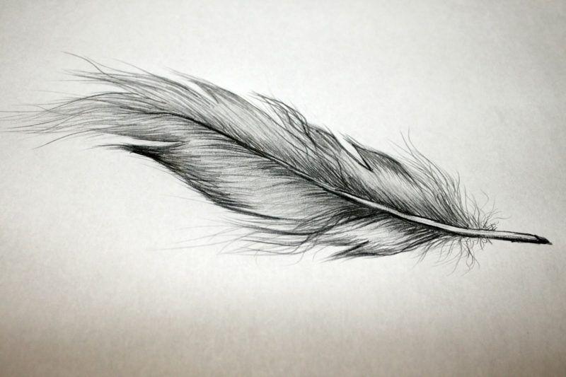 Feder Tattoo Bedeutung Und Vorlagen Tattoos