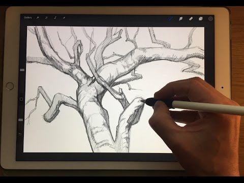 apple pencil drawing ipad