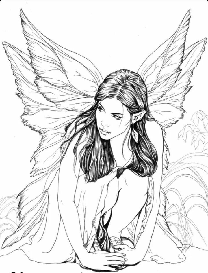 fairy coloring page fairy elf fantasy adult coloring pinterest fairy adult coloring and. Black Bedroom Furniture Sets. Home Design Ideas