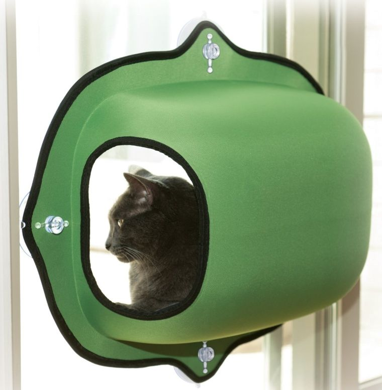 EZ Mount Window Pod Kitty Sill Green Pets Pinterest Kitty - 22 awesome pieces furniture every cat owner will love