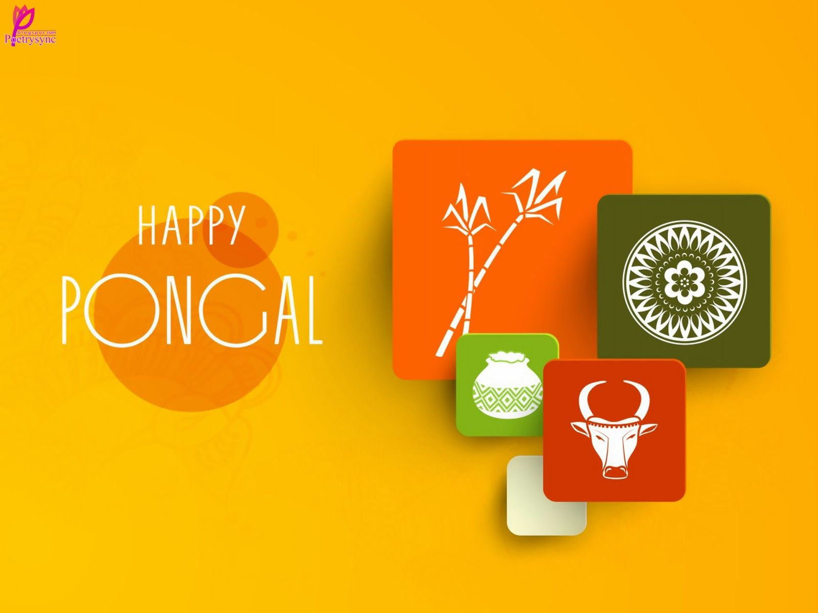 Happy Pongal Festival Greetings And Wishes Card Picture Wallpaper