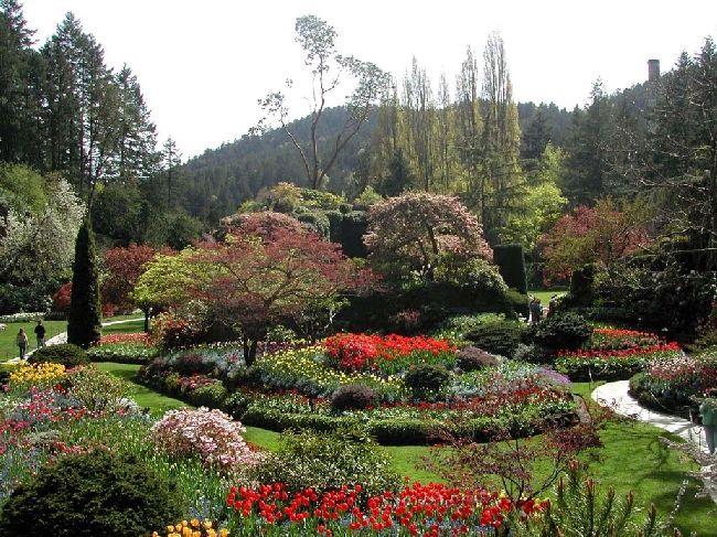 Shangrala's Butchart Gardens #butchartgardens