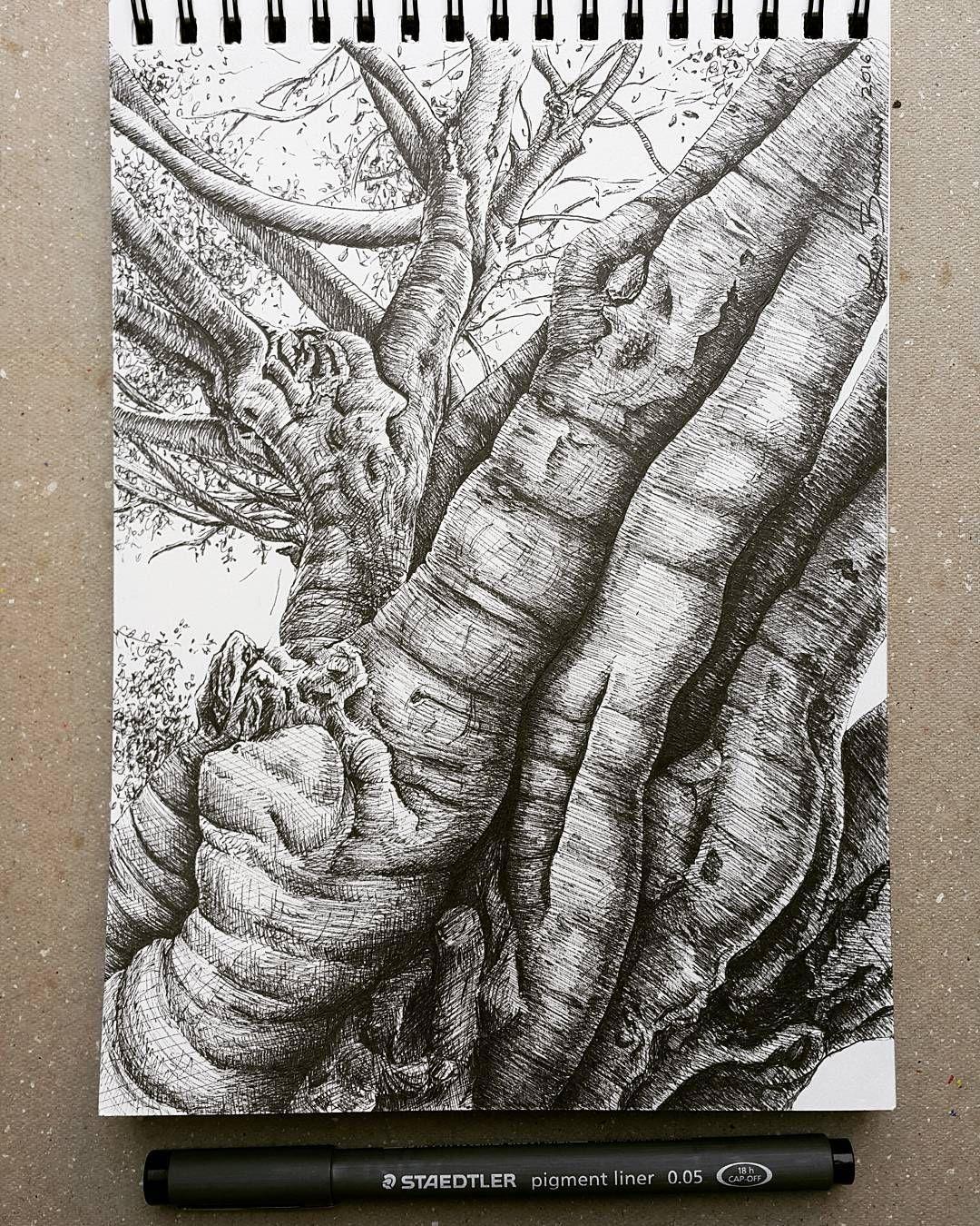 Lidia Barragán. #sketch #drawing #dibujo #tree #arbol #treedrawing #cuaderno…