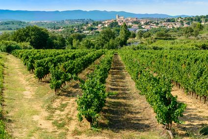 Route gourmande des vignobles de Languedoc-Roussillon