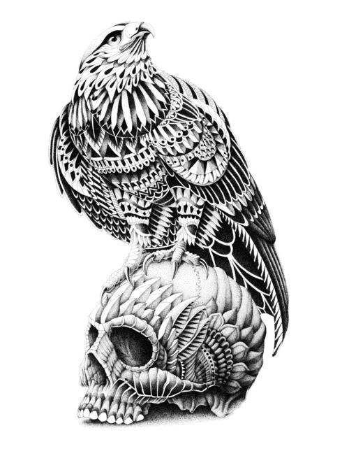 . http://www.creativeboysclub.com/tags/we-love-skulls