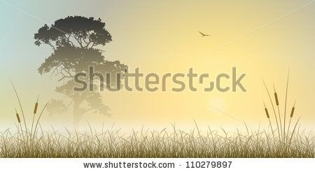 A Misty Sunrise, Sunset Landscape with Tree and Reeds - stock vector