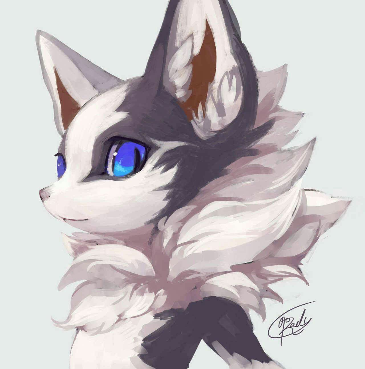By Http Rady Wolf Tumblr Com Cute Fantasy Creatures Furry Drawing Anime Furry