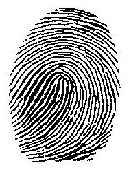 Dna Black And White Decor Crime Google Search Forensics Forensic Science Science Classroom Decorations