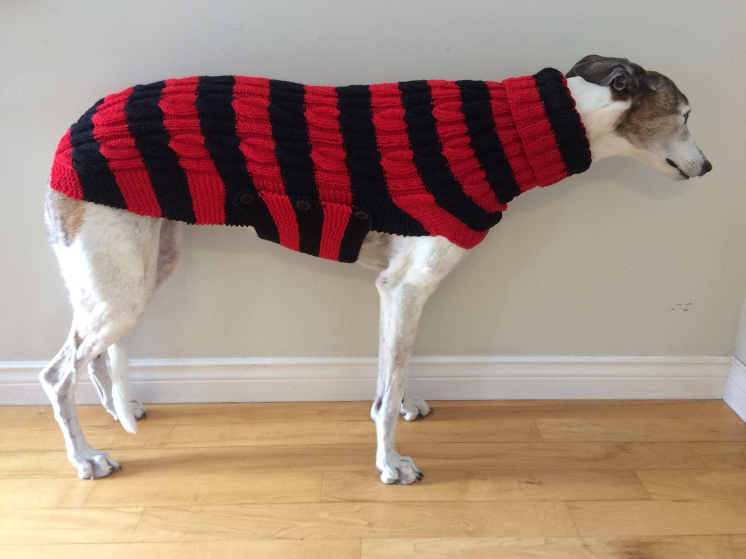 Small greyhound sweater greyhound sweater greyhound coat small greyhound sweater greyhound sweater greyhound coat sighthound coat dog sweater large dog sweater large dog clothes bankloansurffo Images