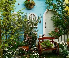 Search results for garden on imgfave