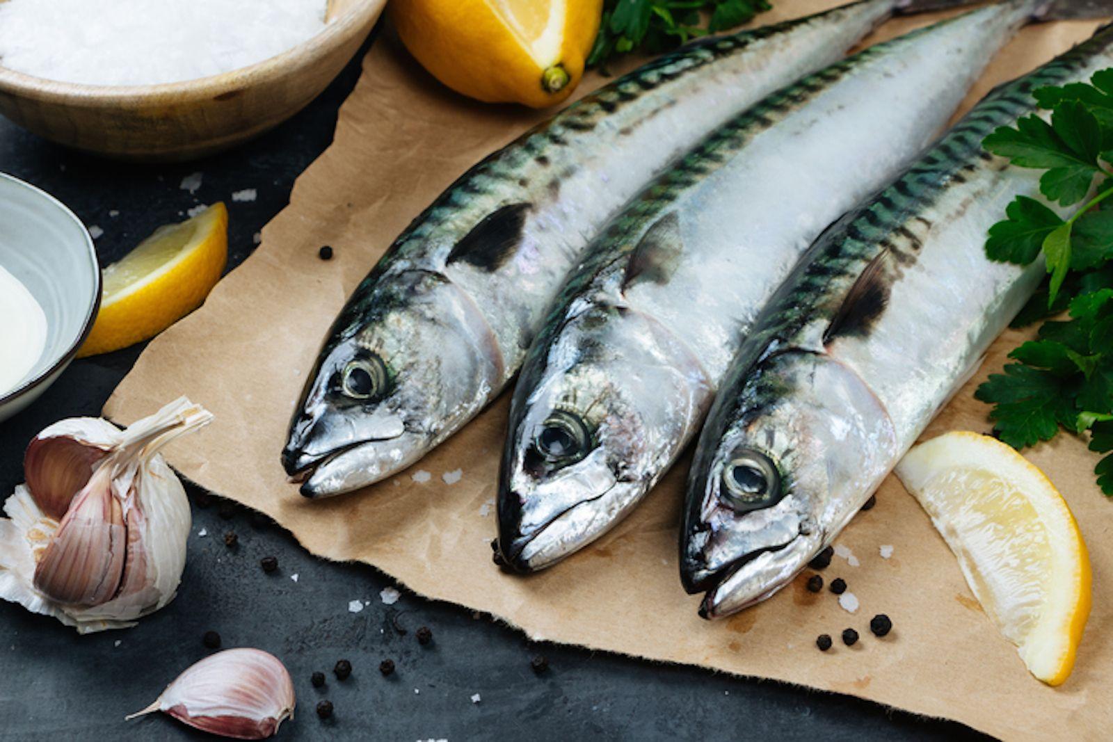 Oggi proviamo a cucinare lo sgombro un pesce ricco di for Cucinare sgombro
