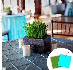 Wedding Color Combo: Aqua Blue + Green