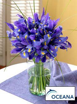 Iris Bouquet Blumenarrangements Hochzeitsgestecke Blumen Blumenstrauss