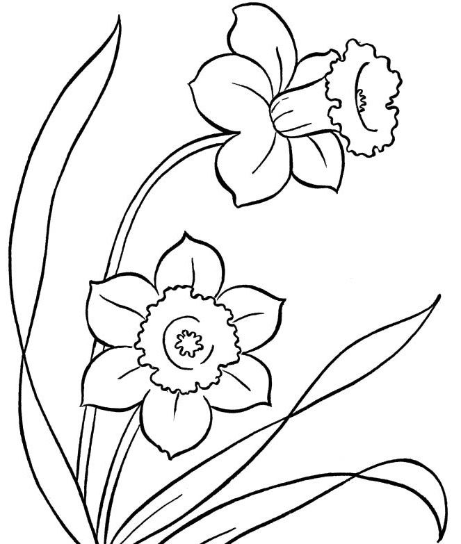 Spring Flowers Colouring Pages To Print Spring Day Cartoon