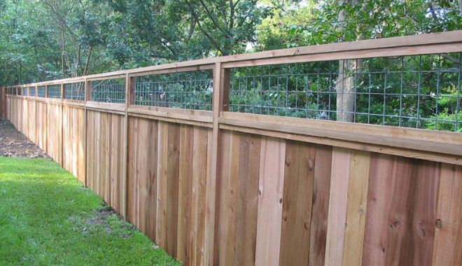 6 Foot Cedar Fence With Cattle Panel Insert Cedar Fence Cattle Panels Backyard Fences