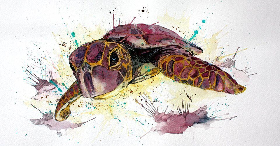 Beautifully Vibrant Watercolors Of Wild Animals Animal Paintings