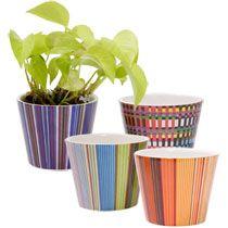 Bulk Striped Terra Cotta Pots 3 At Dollartree Com Terracotta Pots Painted Flower Pots Outdoor Events Decor