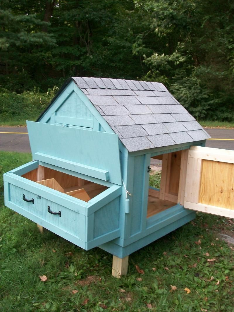 chicken coop simple and easy to clean and off the ground love it