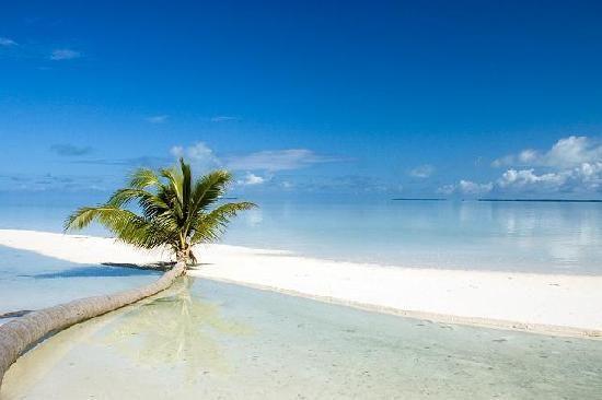 Resultado de imagem para mares e ilhas